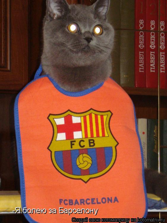 Котоматрица: -Я болею за Барселону