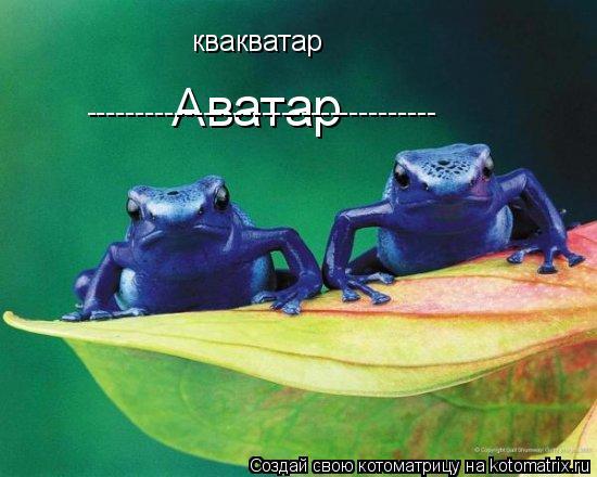 Котоматрица: Аватар ------------------------------------ квакватар