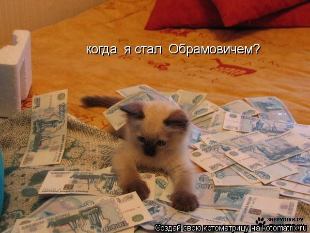 Котоматрица: когда  я стал  Обрамовичем?
