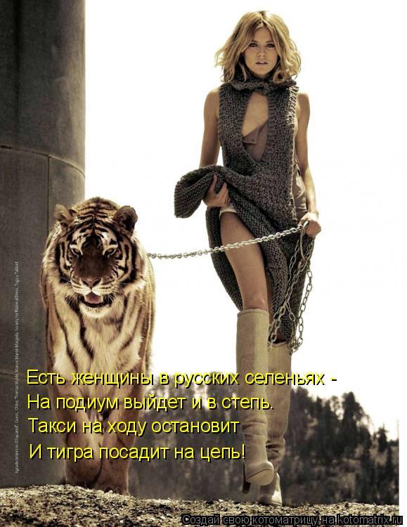 Котоматрица: Есть женщины в русских селеньях - На подиум выйдет и в степь. Такси на ходу остановит И тигра посадит на цепь!