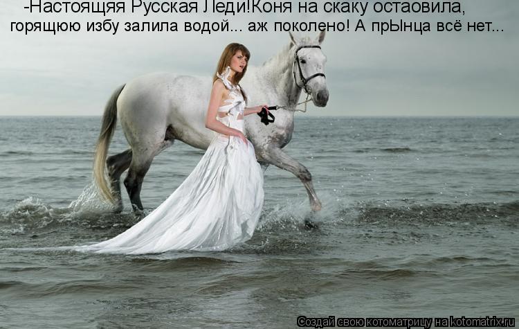 Котоматрица: -Настоящяя Русская Леди!Коня на скаку остаовила,  горящюю избу залила водой... аж поколено! А прЫнца всё нет...