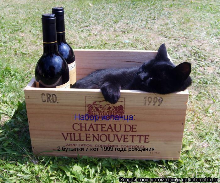 Котоматрица: Набор испанца: 2 бутылки и кот 1999 года рождения