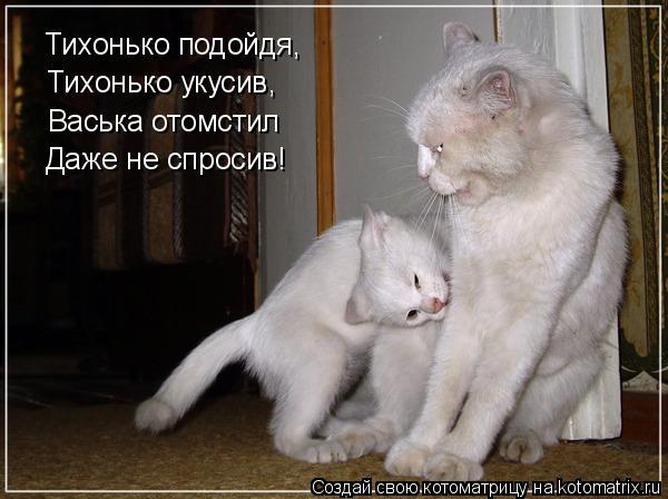 Котоматрица: Тихонько подойдя, Тихонько укусив, Васька отомстил Даже не спросив!