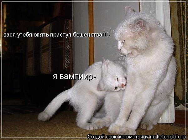 Котоматрица: я вампиир- вася утебя опять приступ бешенства!!!-