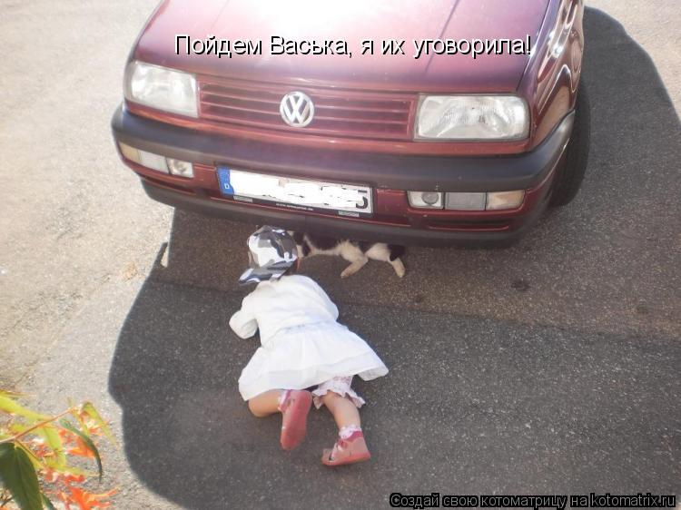 Котоматрица: Пойдем Васька, я их уговорила!