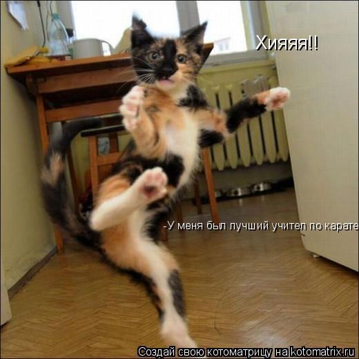 Котоматрица: Хияяя!! -У меня был лучший учител по карате!!