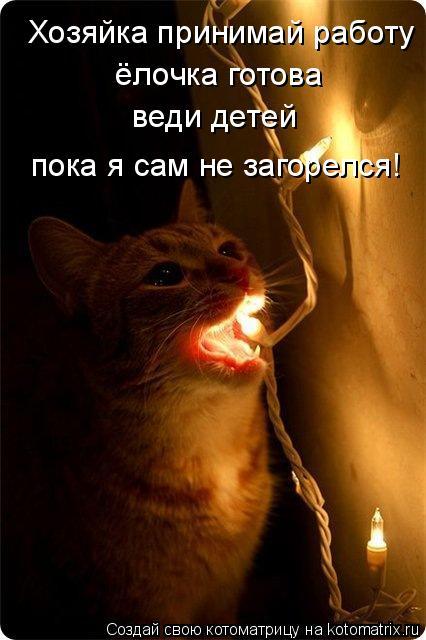 Котоматрица: Хозяйка принимай работу  ёлочка готова веди детей  пока я сам не загорелся!