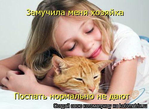 Котоматрица: Замучила меня хозяйка Поспать нормально не дают Поспать нормально не дают