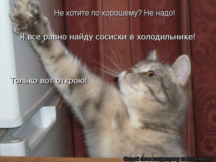 Котоматрица: Не хотите по хорошему? Не надо! Я все равно найду сосиски в холодильнике! Только вот открою!