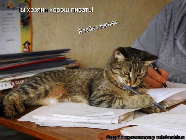 Котоматрица: Ты хозяин хорош писать! Я тебя заменяю.