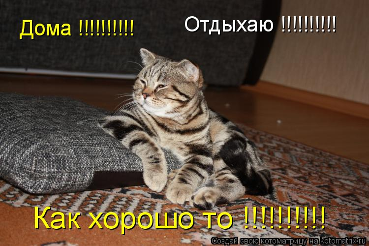 Котоматрица: Отдыхаю !!!!!!!!!! Дома !!!!!!!!!! Как хорошо то !!!!!!!!!!