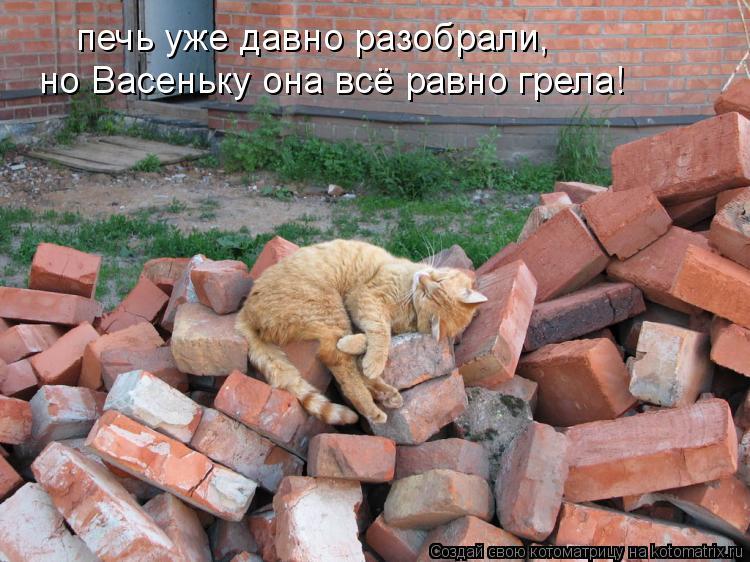 Котоматрица: печь уже давно разобрали,  но Васеньку она всё равно грела!