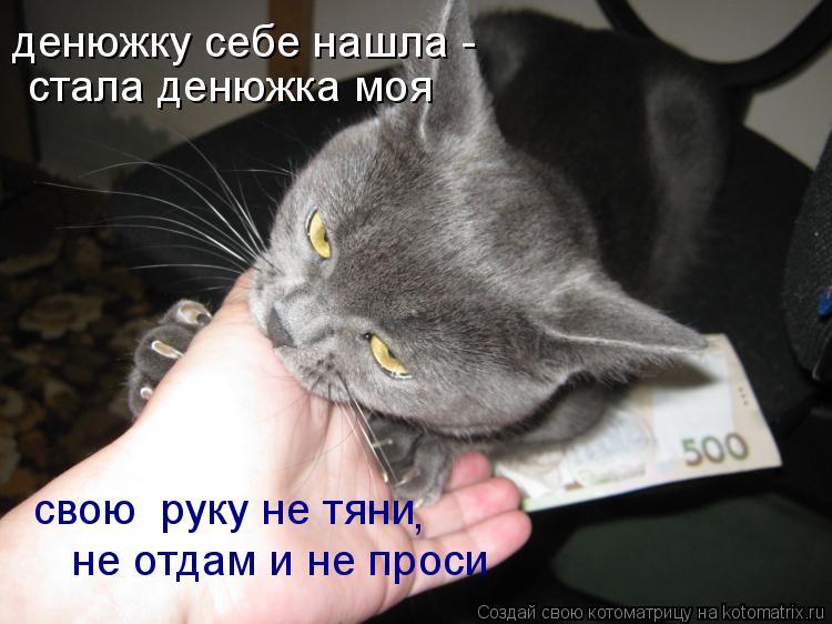 Котоматрица: денюжку себе нашла -  стала денюжка моя свою  руку не тяни не отдам и не проси ,