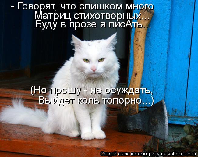 Котоматрица: - Говорят, что слишком много Матриц стихотворных... Буду в прозе я писАть... (Но прошу - не осуждать, Выйдет коль топорно...)