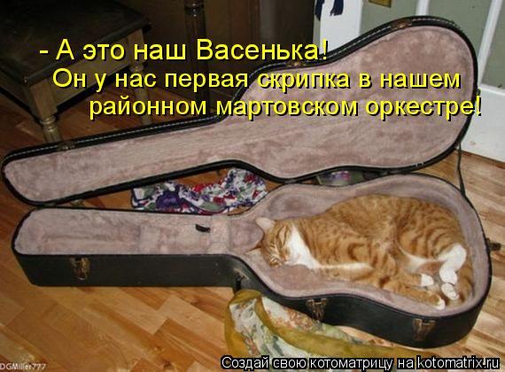 Котоматрица: - А это наш Васенька!  Он у нас первая скрипка в нашем  районном мартовском оркестре!