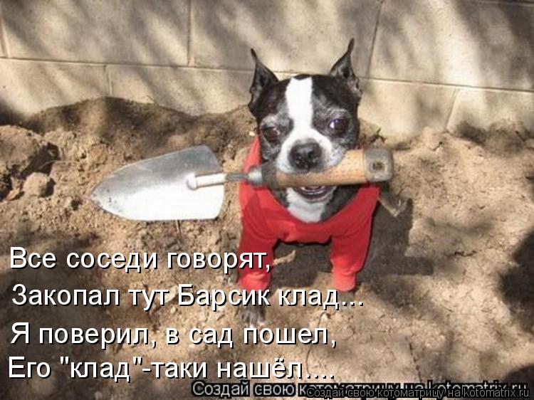 Член пса в ее попе 22 фотография