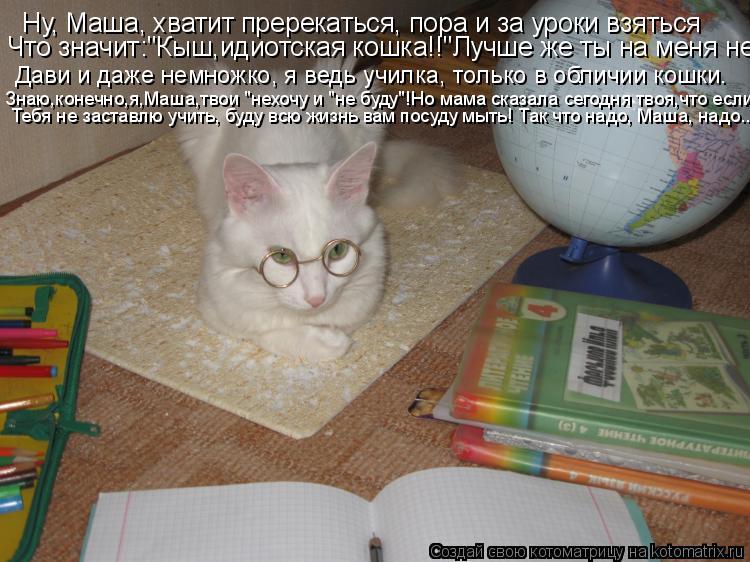 """Котоматрица: Ну, Маша, хватит пререкаться, пора и за уроки взяться Что значит:""""Кыш,идиотская кошка!!""""Лучше же ты на меня не  Дави и даже немножко, я ведь учи"""