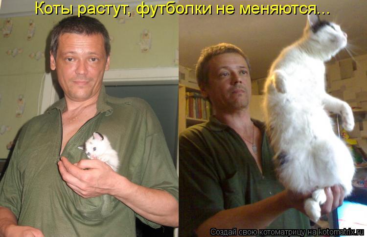 Котоматрица - Коты растут, футболки не меняются...