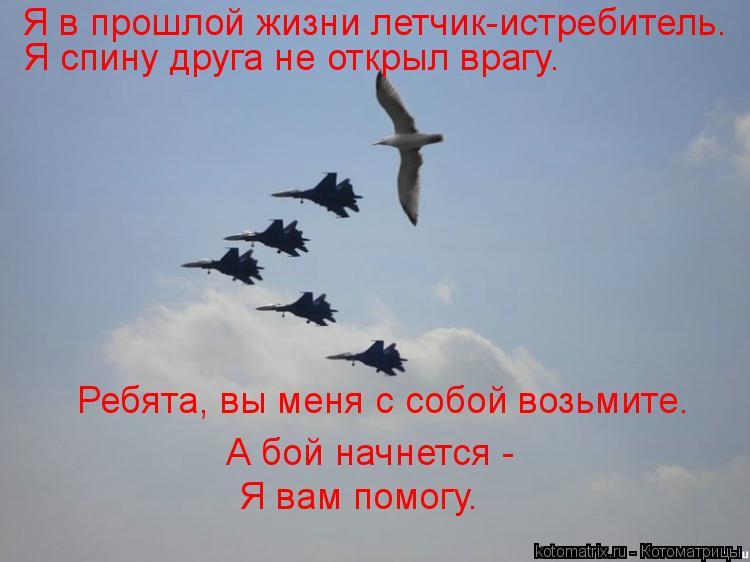 Котоматрица - Я в прошлой жизни летчик-истребитель. Я спину друга не открыл врагу. Р