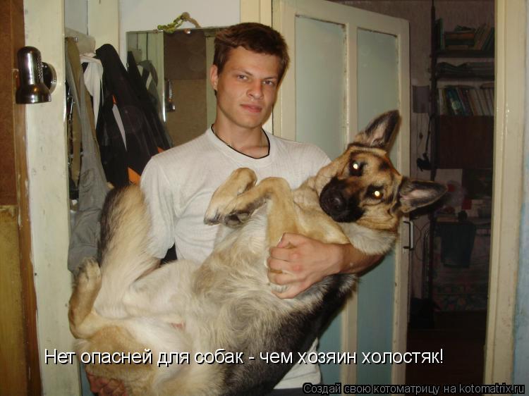 Котоматрица: Нет опасней для собак - чем хозяин холостяк!