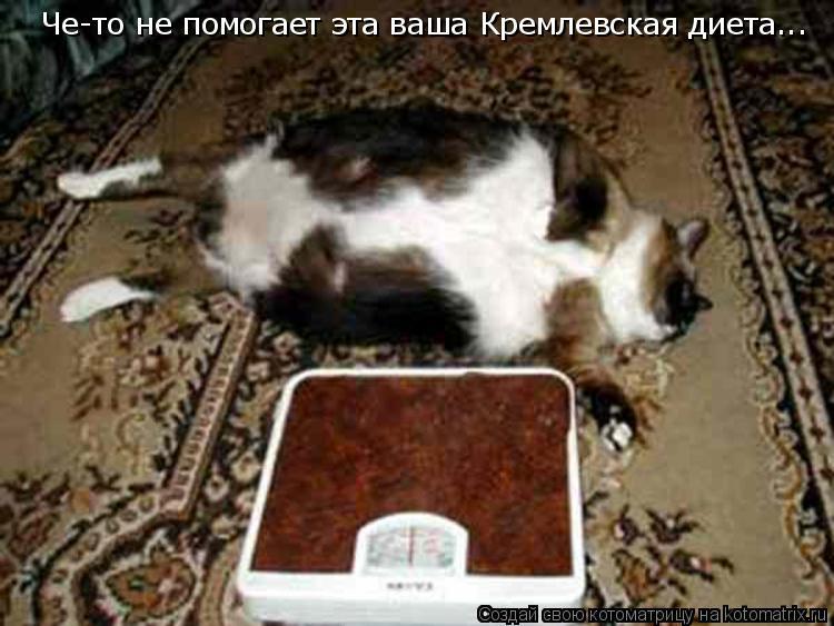 Кремлевская диета «эффективный способ сбросить лишний вес, когда.