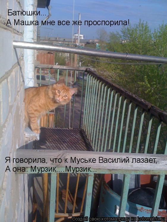 Котоматрица: Батюшки... А Машка мне все же проспорила! Я говорила, что к Муське Василий лазает, А она: Мурзик....Мурзик...