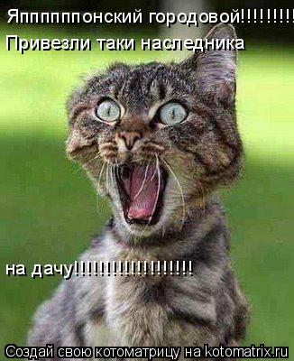 Котоматрица: Яппппппонский городовой!!!!!!!!!! Привезли таки наследника на дачу!!!!!!!!!!!!!!!!!!!