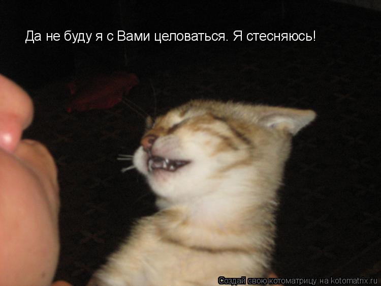 http://kotomatrix.ru/images/lolz/2011/05/25/915376.jpg