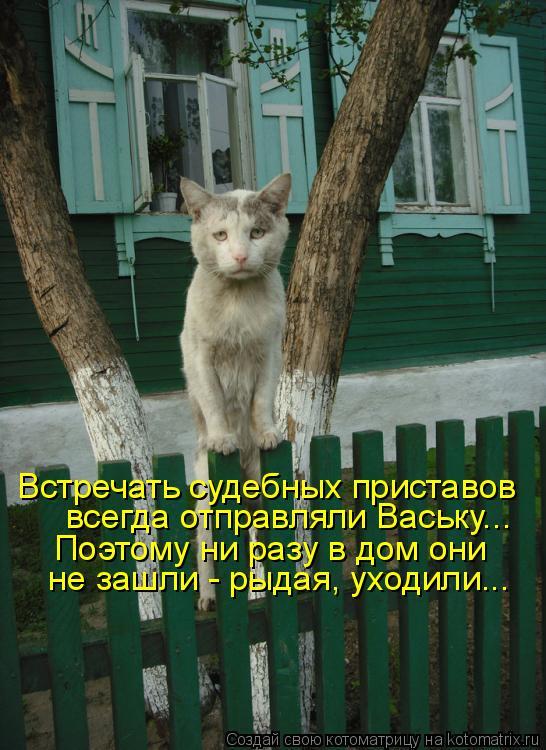 Котоматрица - Встречать судебных приставов всегда отправляли Ваську... Поэтому ни ра