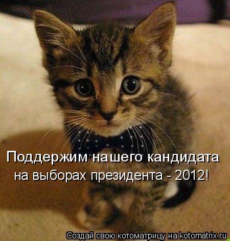 Котоматрица: Поддержим нашего кандидата  на выборах президента - 2012!