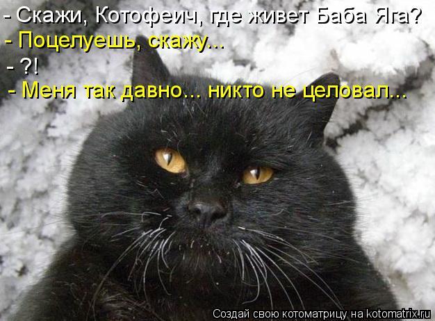Котоматрица: - Скажи, Котофеич, где живет Баба Яга? - Поцелуешь, скажу... - ?! - Меня так давно... никто не целовал...