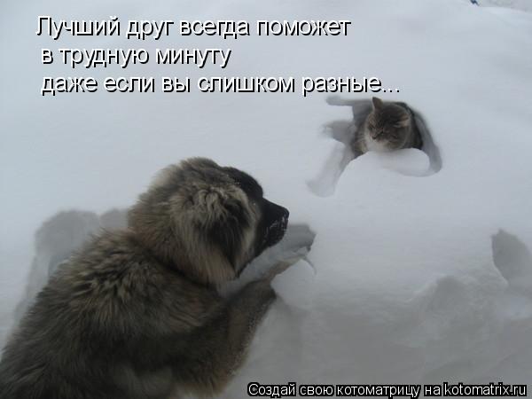 всегда буду ценить тех людей,которые в трудный момент скажут: я с тобой!
