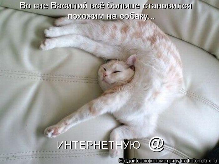 Котоматрица - Во сне Василий всё больше становился  ИНТЕРНЕТНУЮ    @  похожим на соб