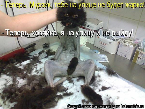 http://kotomatrix.ru/images/lolz/2011/05/26/916116.jpg