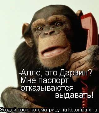 Котоматрица: -Алле, это Дарвин? Мне паспорт  отказываются  выдавать! ..