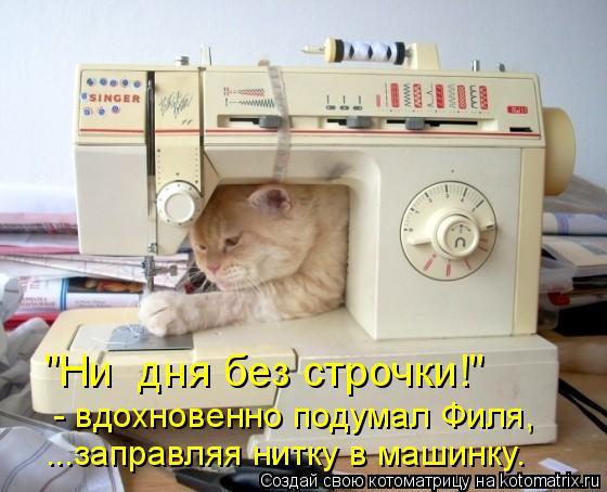 "Котоматрица - ""Ни  дня без строчки!"" ...заправляя нитку в машинку.  - вдохновенно по"