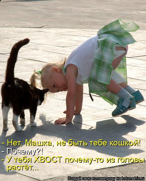 Котоматрица: - Нет, Машка, не быть тебе кошкой! - Почему?! - У тебя ХВОСТ почему-то из головы растёт...