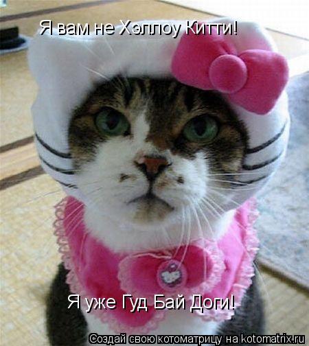 Котоматрица: Я вам не Хэллоу Китти! Я уже Гуд Бай Доги!