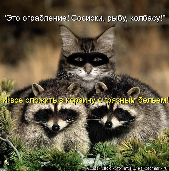 """Котоматрица - """"Это ограбление! Сосиски, рыбу, колбасу!"""" И все сложить в корзину с гр"""