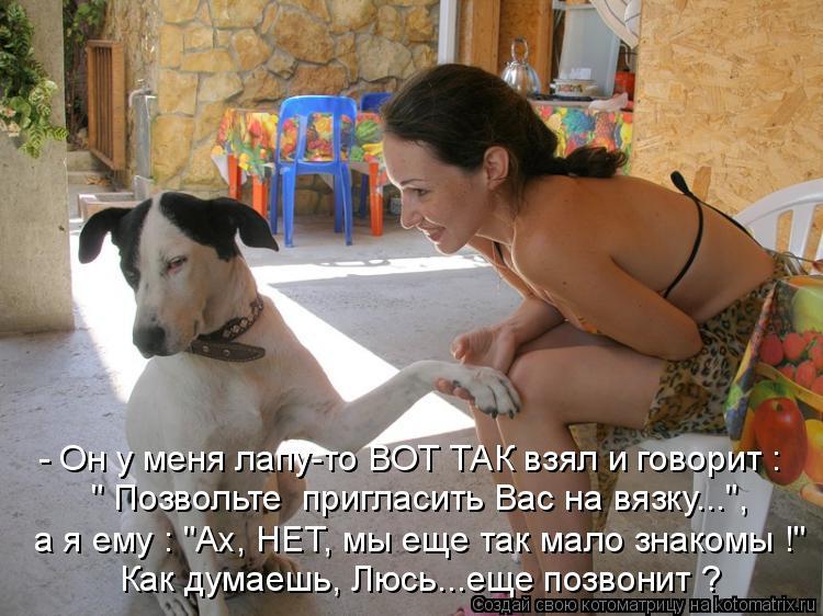Котоматриця!)))) - Страница 5 917848