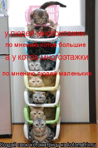 Котоматрица: у людей многоитажки по мнению котов большие а у котов многоэтажки по мнению людей маленькие