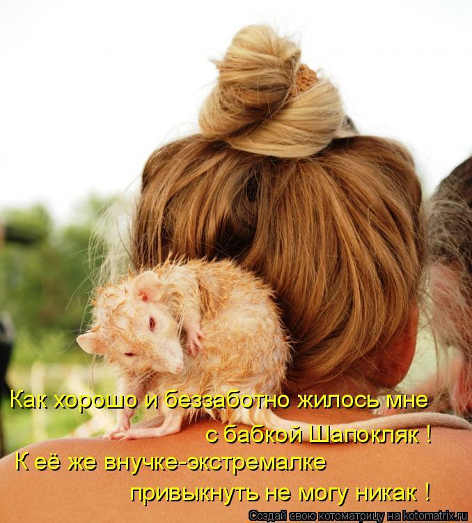 http://kotomatrix.ru/images/lolz/2011/05/28/918066.jpg