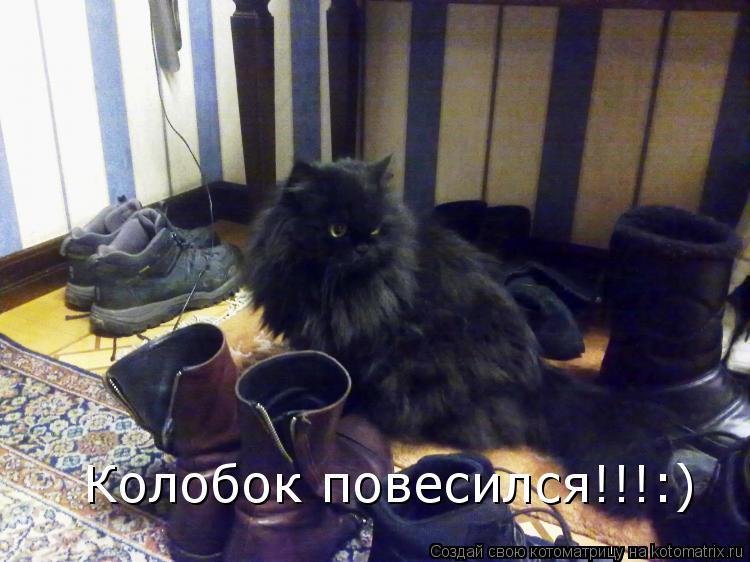 Котоматрица: Колобок повесился!!!:)