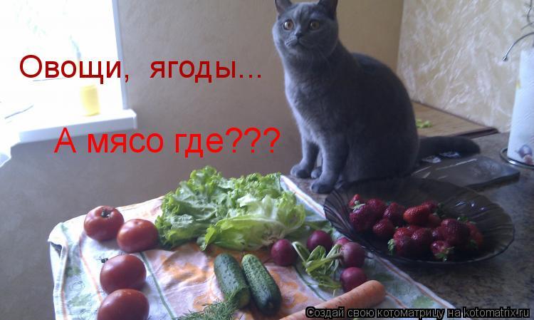 Котоматрица: Овощи,  ягоды... А мясо где???