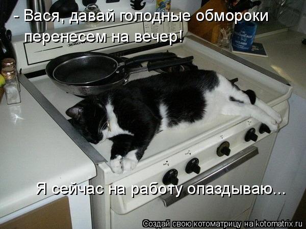 Котоматрица - - Вася, давай голодные обмороки  перенесем на вечер! Я сейчас на работ