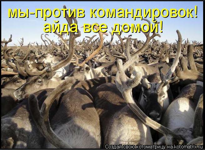 http://kotomatrix.ru/images/lolz/2011/05/29/918304.jpg