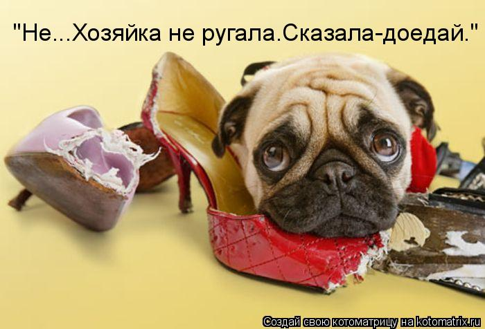 http://kotomatrix.ru/images/lolz/2011/05/29/918431.jpg