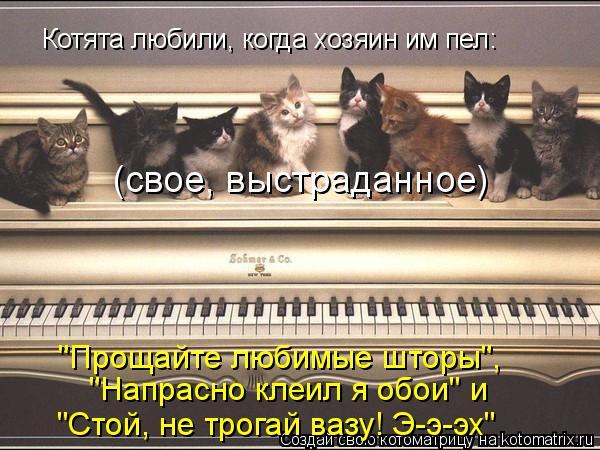"""Котоматрица: Котята любили, когда хозяин им пел: (свое, выстраданное) """"Прощайте любимые шторы"""", """"Напрасно клеил я обои"""" и  """"Стой, не трогай вазу! Э-э-эх"""""""