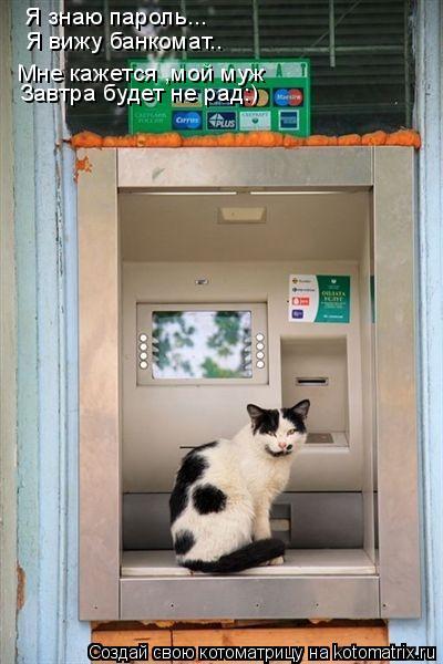 Котоматрица: Я знаю пароль... Я вижу банкомат.. Завтра будет не рад:) Мне кажется ,мой муж