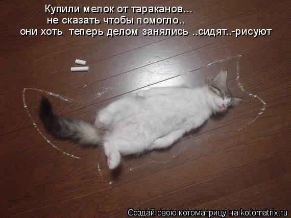 Котоматрица: Купили мелок от тараканов... не сказать чтобы помогло..  они хоть  теперь делом занялись ..сидят..-рисуют